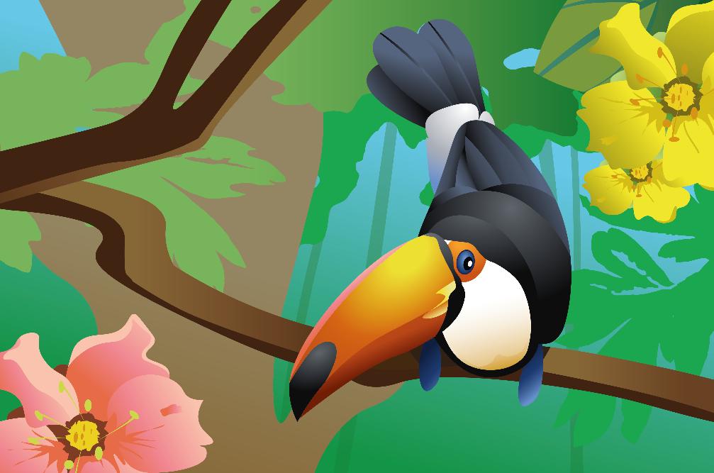 vogels, illustratie, kleurijk, dieren, natuur, illustration, design, illustraties, laten maken, the artistry