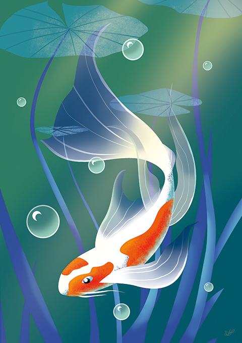 karper, illustratie, watercolor, illustratie laten maken, vis, natuur, prent, kinderboek